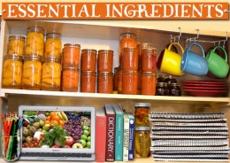 MECFS Blog: Essential Ingredients On The New Shopping List